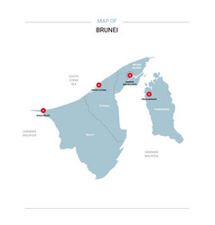 Brunei map with red pin vector