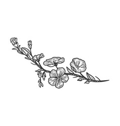 Linen flower sketch vector