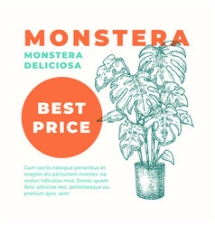 Monstera plant abstract sign or label vector