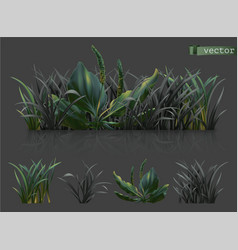 Spring dark green grass 3d realistic icon set vector