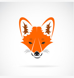 a fox face design on white background wild vector image