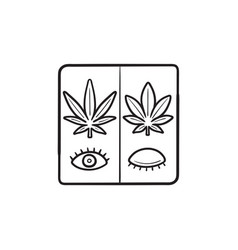 cannabis sativa and cannabis indica for day and vector image