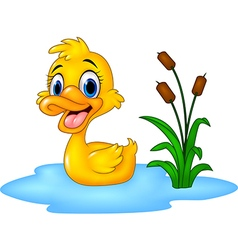 Cartoon funny baby duck floats on water vector