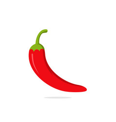 chilli pepper vector image