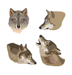 Heads of gray wolves vector