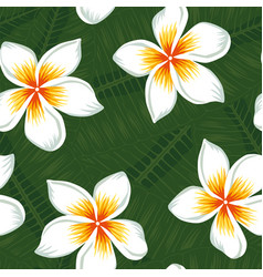 Plumeria and leaves background seamless vector