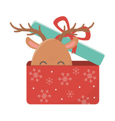 reindeer coming out gift box celebration merry vector image