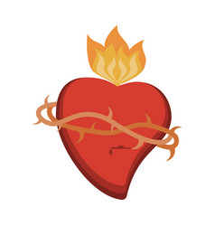 sacred heart catholic symbol vector image