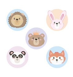 set cute wild animal heads vector image
