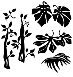 tripical plants vector image vector image