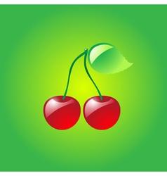 Glossy cherries vector image vector image