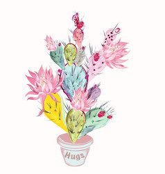 beautiful with pink cactus flower vector image