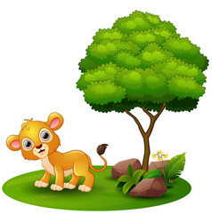 Cartoon lion under a tree on a white background vector