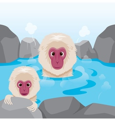 Snow Monkey Relaxing In Hot Spring vector image