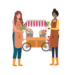 Women in store kiosk with vegetables avatar vector