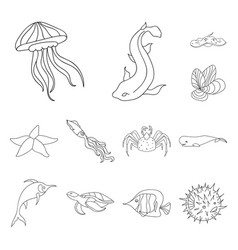 a variety of marine animals outline icons in set vector image