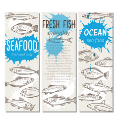 banner hand drawn fish vector image