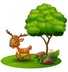 Cartoon deer under a tree on a white background vector