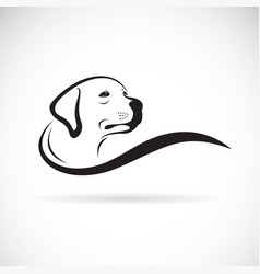 dog head designlabrador retriever on white vector image