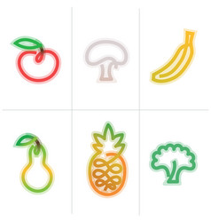 fruits icon vector image