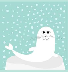 white sea lion harp seal pup lying on iceberg ice vector image