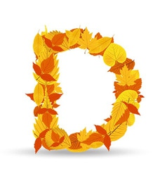 Autumn leaves font letter D vector