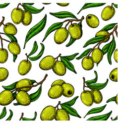 Olive seamless pattern hand drawn vector