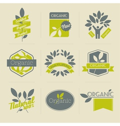 Organic retro labels vector image