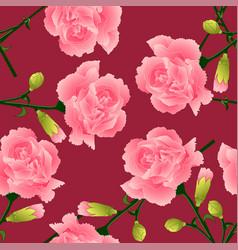 Dianthus caryophyllus - carnation flower clove vector