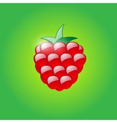 Glossy raspberry vector image