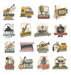music instrument vinyl record microphone icons vector image
