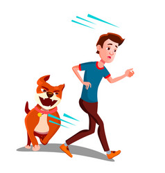 Scared boy runs away from the dog isolated vector