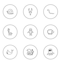 set of 9 editable zoology icons includes symbols vector image