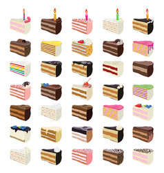 sweet cake slices vector image
