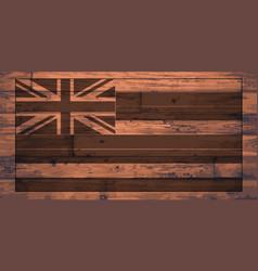 Hawaii flag brand vector