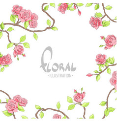 red delicate roses on a white background vector image