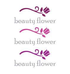 beauty flower logo vector image vector image
