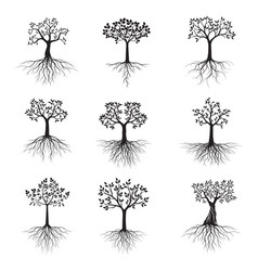 Black shape tree with leaves and roots vector