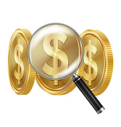 Dollar and magnifying glass business vector