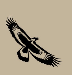 eagle design on brown background wild animals vector image