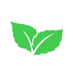 eco green color leaf logo flat icon bio vector image