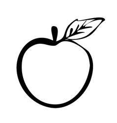 Hiqh quality apple drawn in outline vector