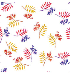 rowan branches and rowanberry seamless white vector image