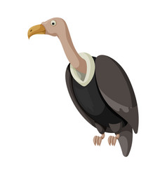 Vulture bird iconcartoon icon vector