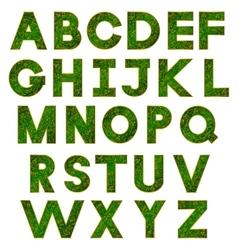 green alphabet vector image vector image