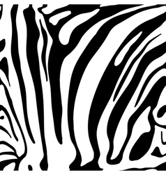 Animal print monochrome seamless pattern vector image