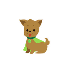 cute and funny puppy and dog superhero in a green vector image