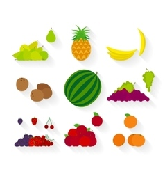 Different fruit flat icons vector image