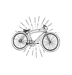 old bicycle emblem vector image