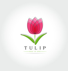 simple tulip bud with leaves design vector image